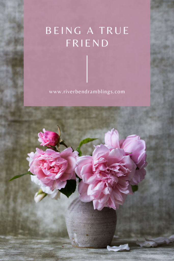 vase of pink flowers with a grey background and post title being a true friend