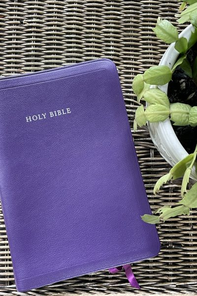purple bible